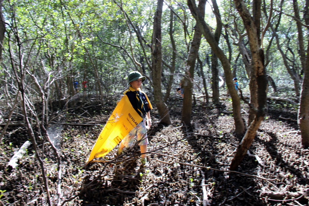 Mangroves Clean Up Aust Day 2016